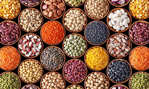 فيبر غذایی چیست؟ عوارض کمبود فیبر در بدن انسان