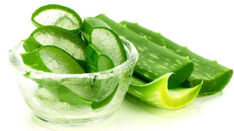 روش های درمان سنتی و داروی گیاهی برای بواسیر