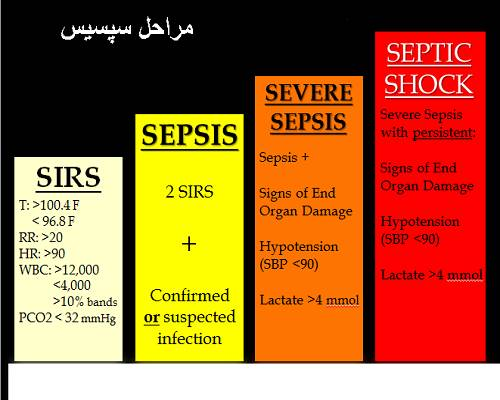 تصویر: https://jarah.clinic/wp-content/uploads/2019/12/Sepsis_Steps.jpg